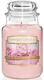 Свеча Yankee Candle Blush Bouquet 623g