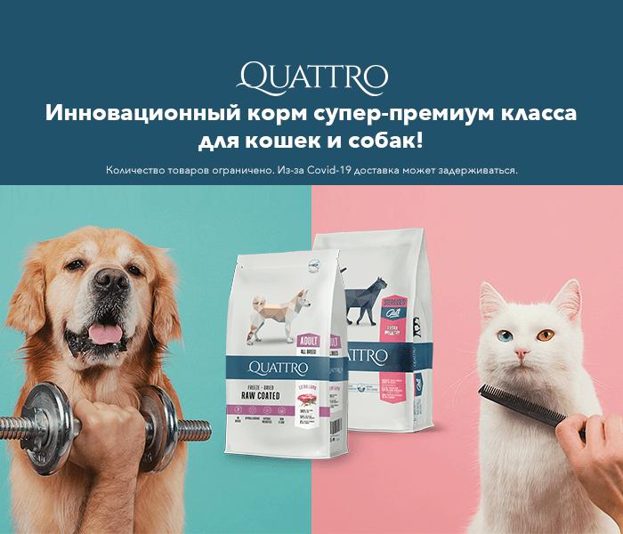 Инновационный корм супер-премиум класса для кошек и собак